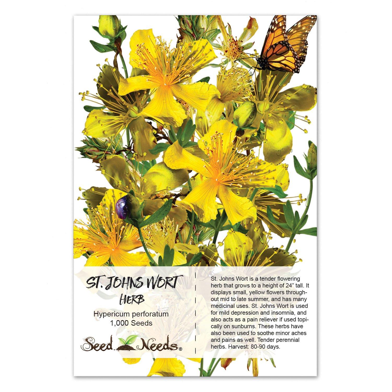 Amazon.com: Package of 1,000 Seeds, St. Johns Wort (Hypericum ...