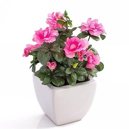 Azalea Decorativa TABITA, Fiori Rosa, Foglie Verdi, In Vaso Di Ceramica, 26