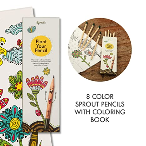 Sprout Pack de lápices de colores para niños | caja de 8 | lápices ...