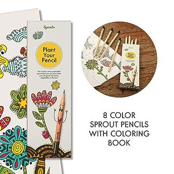 Sprout Pack de lápices de colores para niños   caja de 8   lápices ...