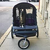 Amazon Com Baby Trend Expedition Double Jogger Stroller