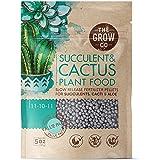 Succulents & Cactus Plant Food - Gentle Long Lasting Formula, Slow Release Fertilizer (Liquid Alternative) for All Potted Suc