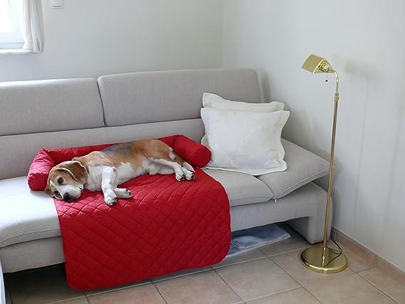 Leo perro cama sofá M 70 x 90 cm rojo Sillón Protección sofá sofá Pro Tect: Amazon.es: Productos para mascotas