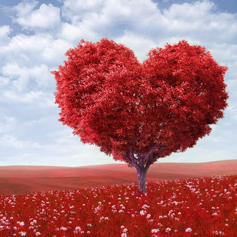 Картинки по запросу Любовь