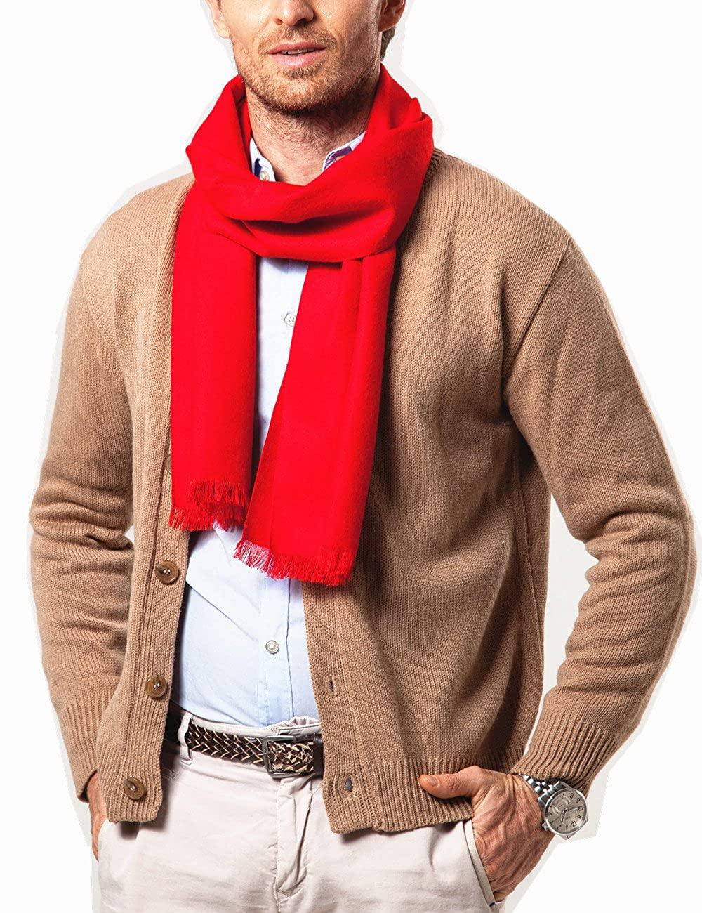 Shubb Mens Fashion Scarves for Winter Soft Cashmere Feel Scarf for Men 70.8 Inches /¡/Á 11.8 Inches