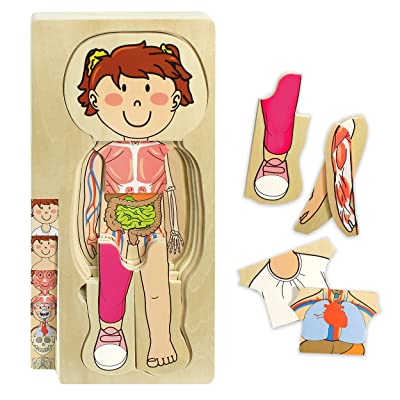 Kidzlane Wooden My Body Puzzle for Toddlers & Kids - 29 Piece Girls Anatomy Play Set Ages 3+: Toys & Games