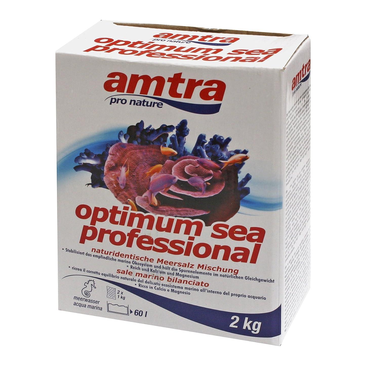 Amtra A0020520 Optimum Sea Professional, 2 kg: Amazon.es: Productos para mascotas
