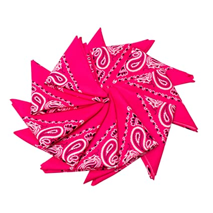 733d03cf1d Amazon.com  Fun Central AU201 12 Piece 21 Inch Pink Bandana