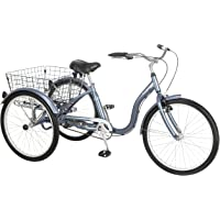 Schwinn Meridian Single Speed Road Bike (Slate Blue)