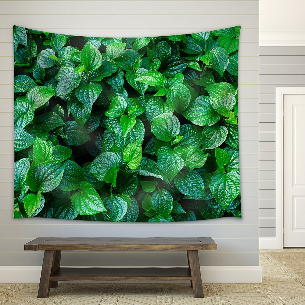 wall26 - Material. Thai Medicinal Plants.(Piper Sarmentosum Roxb.) - Fabric Wall Tapestry Home Decor - 68x80 inches by wall26