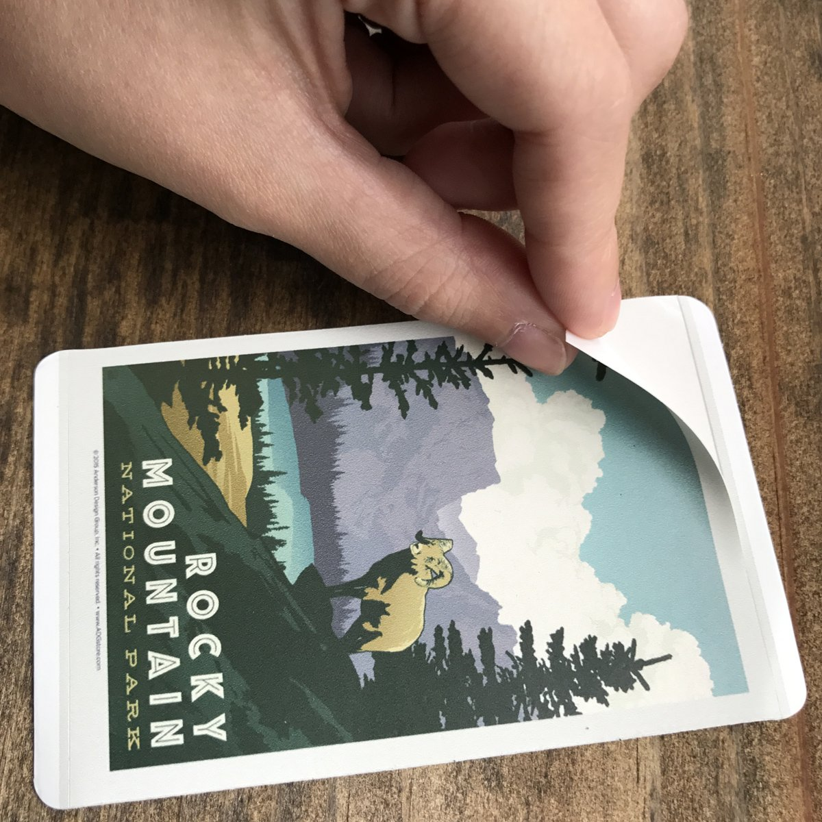 59-Piece Deluxe National Parks Sticker Set by Anderson Design Group (Image #4)