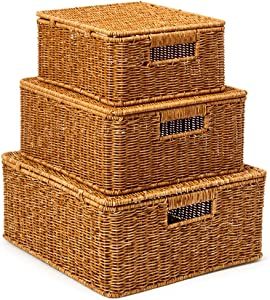 EZOWare Set of 3 Resin Woven Baskets with Lid, Decorative Storage Organizer Bin with Handles - Natural Brown