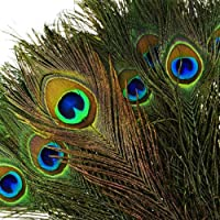 "100pcs Natural Peacock Feathers with Eye Peacock Tail Feathers 10"" - 12"" (25-30cm) Perfect for Wedding Party Arts and…"
