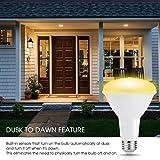 TechgoMade BR30 Dusk to Dawn Sensor LED Light