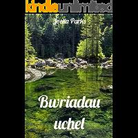 Bwriadau uchel (Welsh Edition)