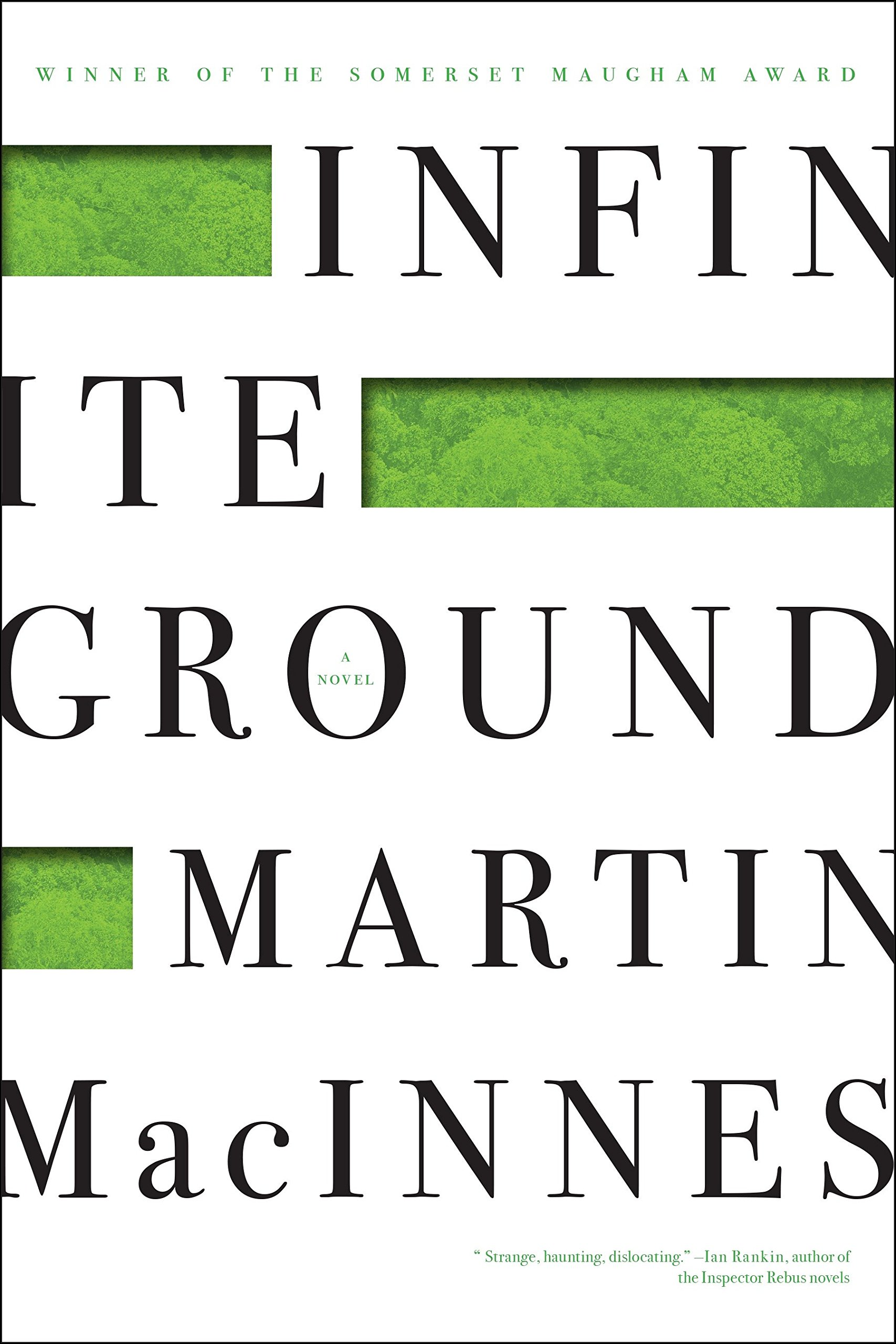 Download Infinite Ground pdf