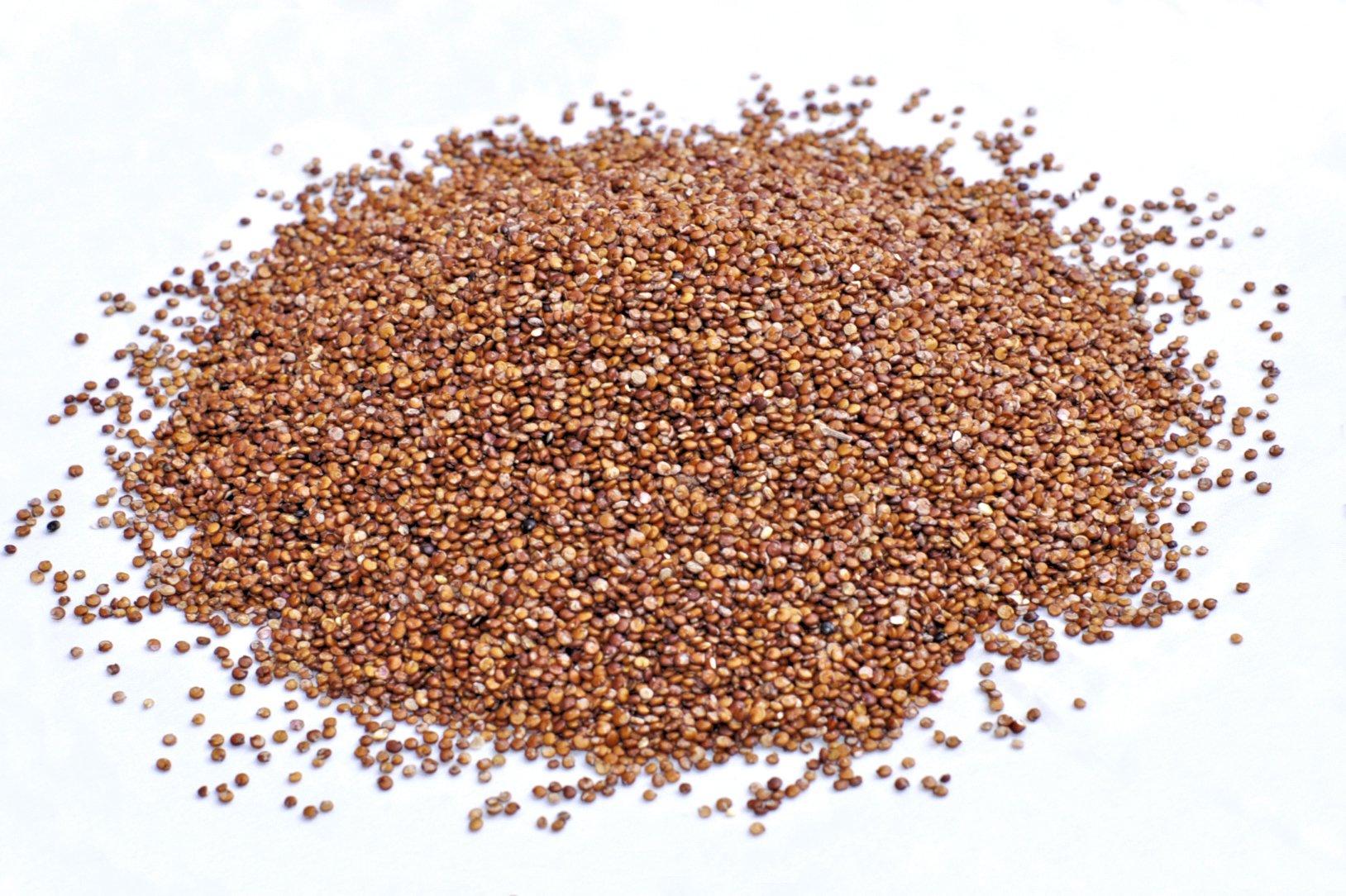 Royal Organic Red OA Quinoa (25 Lb bag) by OA QUINOA (Image #4)