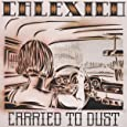 Carried to Dust [Vinyl LP]