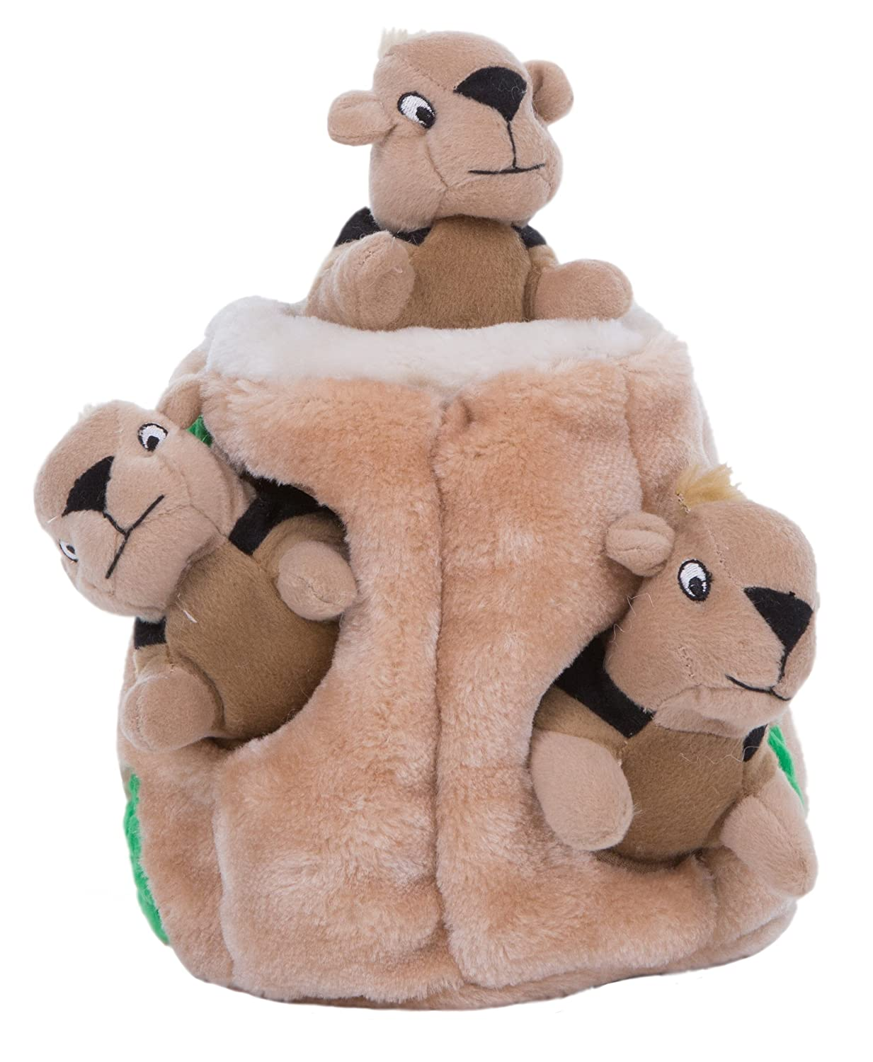 Amazon.com: Outward Hound Hide a Squirrel Fun Hide and Seek ... | Busy Bee Dog Toy