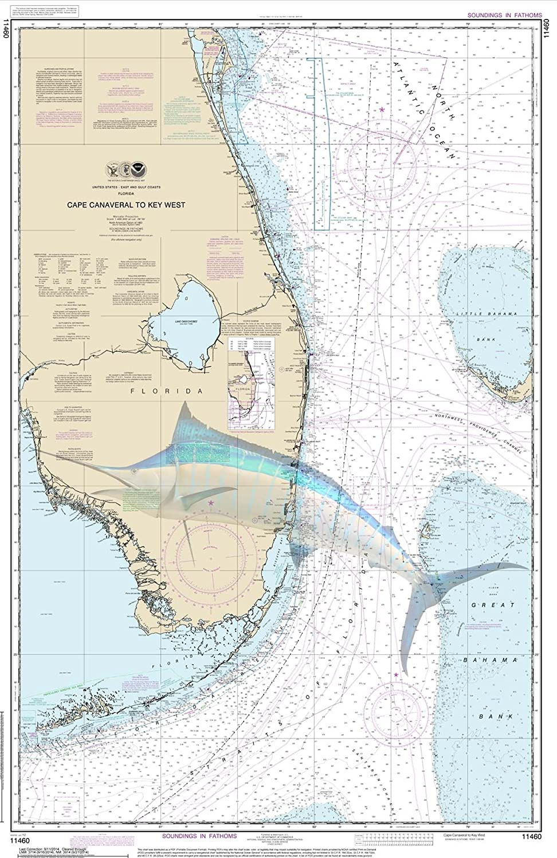 Cape Canaveral Marlin Nautical Chart Unframedビニールアート印刷 – Perfect for室内/室外。全天候型。 16x20 VINYL00311620 B01HP0ZL10  16x20