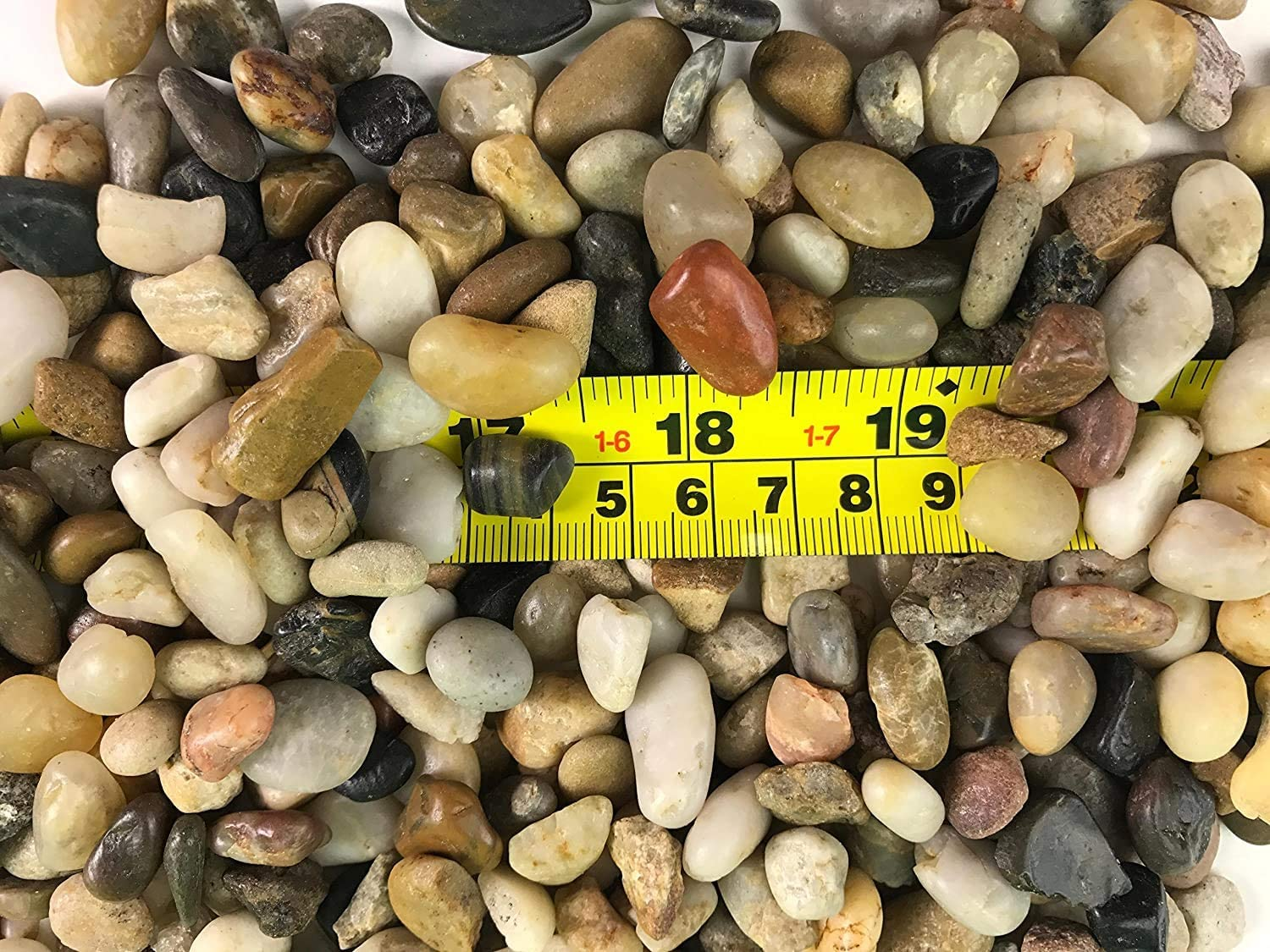RG() 5 LB Polished Mixed Color Stones Small Decorative River Rock Stones