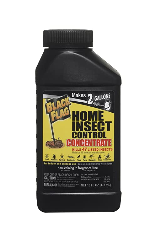 amazon com black flag 61179 home insect control concentrate 16