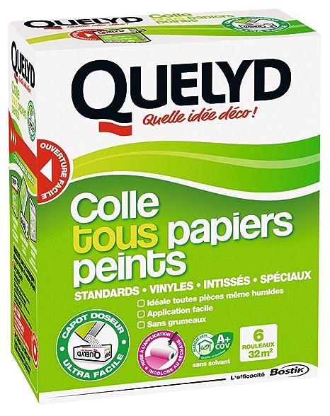 Quelyd Colle Tous PAPIERS Peints 300G Photo, Blanc: Amazon.fr: Jardin