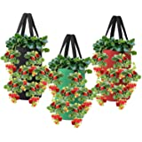 Nicheo 3 Pcs 3 Gallon Hanging Strawberry Planter Hanging Aeration Planter for Strawberry Tomato and Hot Pepper Strawberry Gro
