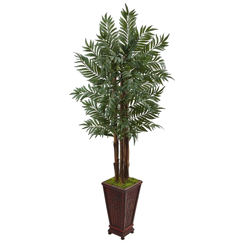 ほぼ天然 5フィート ヤシのヤシの木 グリーン B073QNV8KR