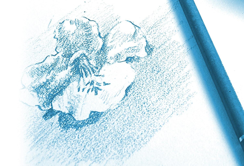 blanco 34/x 25.3/x 0.3/cm Clairefontaine 96174/C unidades papel dibujo Ruvida