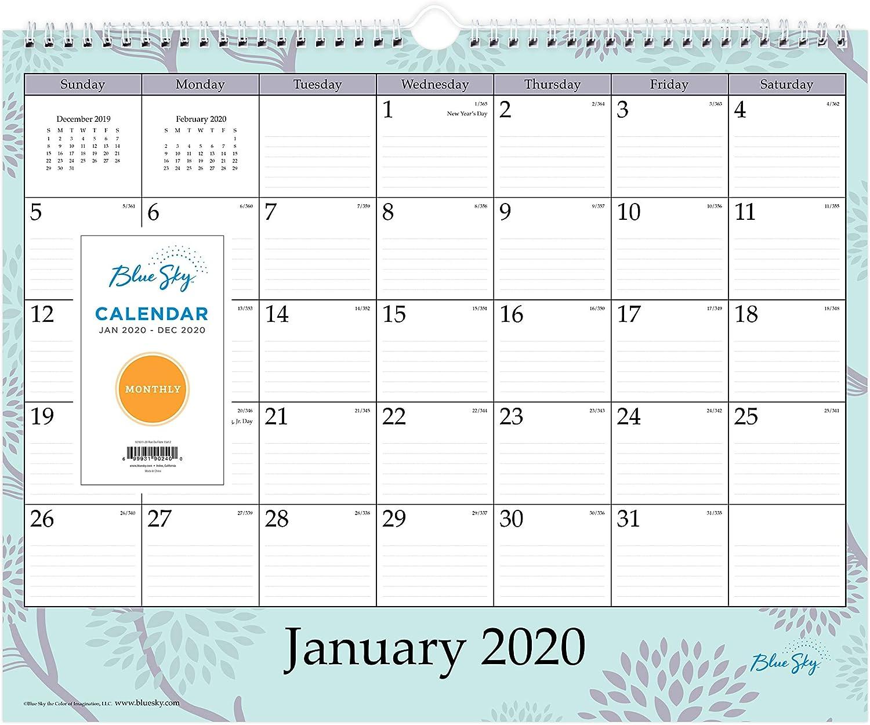 "Blue Sky 2020 Monthly Wall Calendar, Twin-Wire Binding, 15"" x 12"", Rue Du Flore"