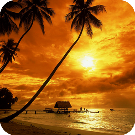 Sunset Wallpaper New 4k Amazones Appstore Para Android