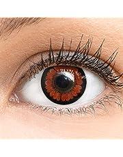 Dunkelbraune Farbige Kontaktlinsen Pretty Hazel Dunkelbraun Sehr Stark Deckende SILIKON COMFORT NEUHEIT von GLAMLENS + Behälter - 1 Paar (2 Stück) - DIA 14.00 mm Mit Stärke -1.25 Dioptrien