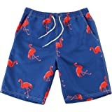 WUAMBO Athletic Men's Quickly Drying Board Shorts Flamingo Printed Swim Trunk