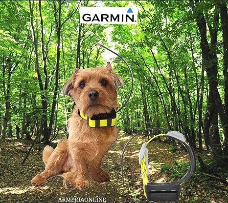 Garmin Radio Collare Gps Satellitari Atemos Per Cane Da Caccia