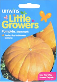 Vegetable Little Growers Pumpkin Mammoth 18 Seeds Unwins Pictorial Packet