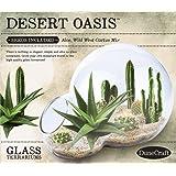 Dunecraft Desert Oasis Terrariums