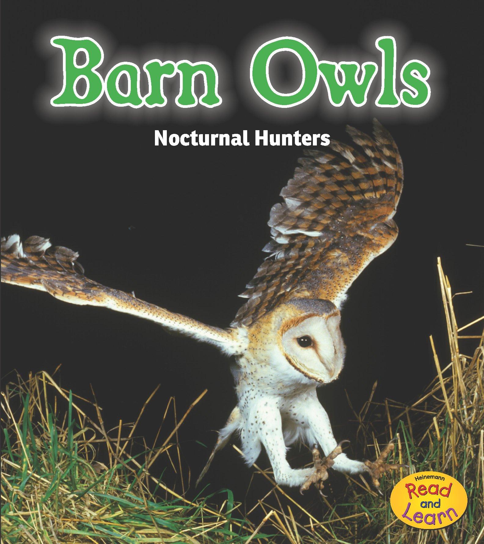 Eagle Owl Follow The Author Amazoncom Amazoncom Barn Owls Nocturnal Hunters night Safari