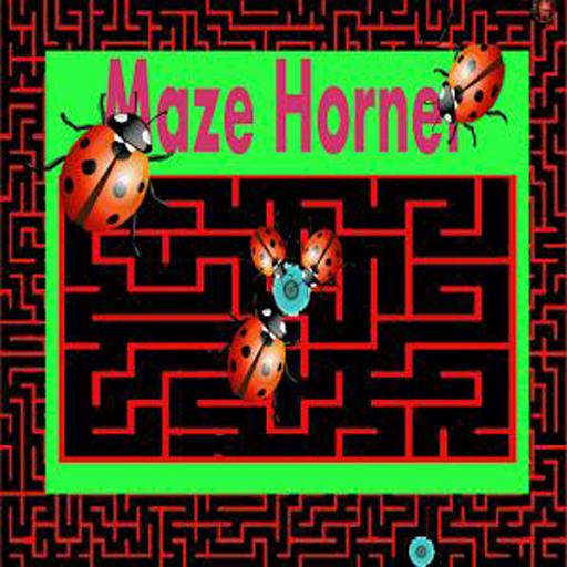 maze-hornet-smart