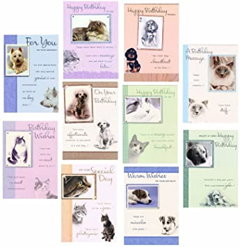 10 Pets Greeting Birthday Cards With Cats Dogs