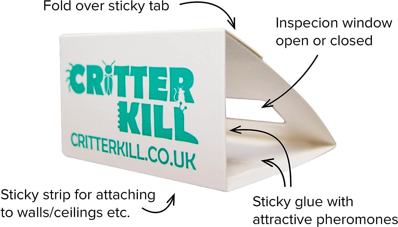 Kinder- und Haustiersicher Spinnen und kriechende Insektenvernichter umweltfreundlich CritterKill Spinnenfalle 30 St/ück