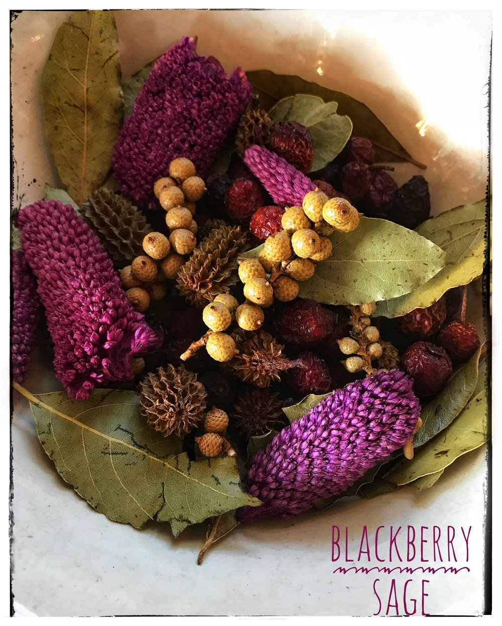 Homestead Studios - Blackberry Sage Potpourri - Perfect Potpourri for all year round by Homestead Studios