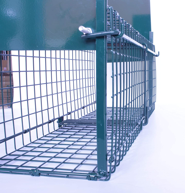 Bird-Tech Jaula ATRAPAR Gatos, Conejos Vivos Doble Puerta (60X25X20CM): Amazon.es: Productos para mascotas