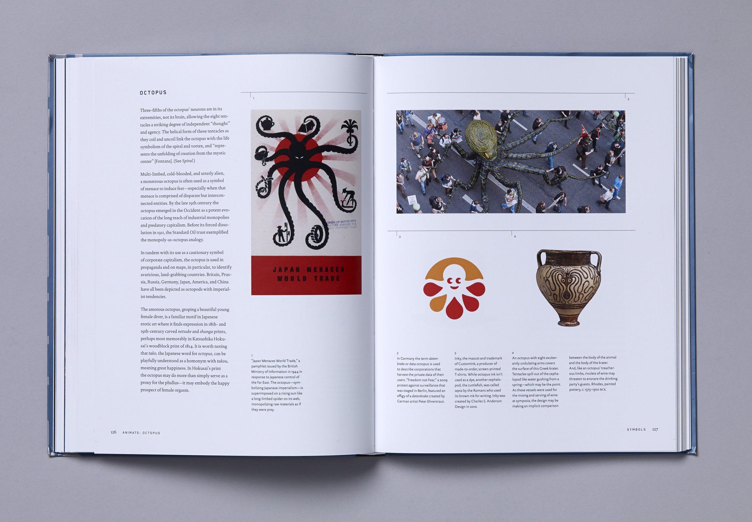 Symbols A Handbook For Seeing Mark Fox Angie Wang 9781580934725