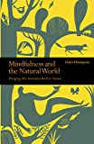 Mindfulness and the Natural World: Bringing our Awareness Back to Nature