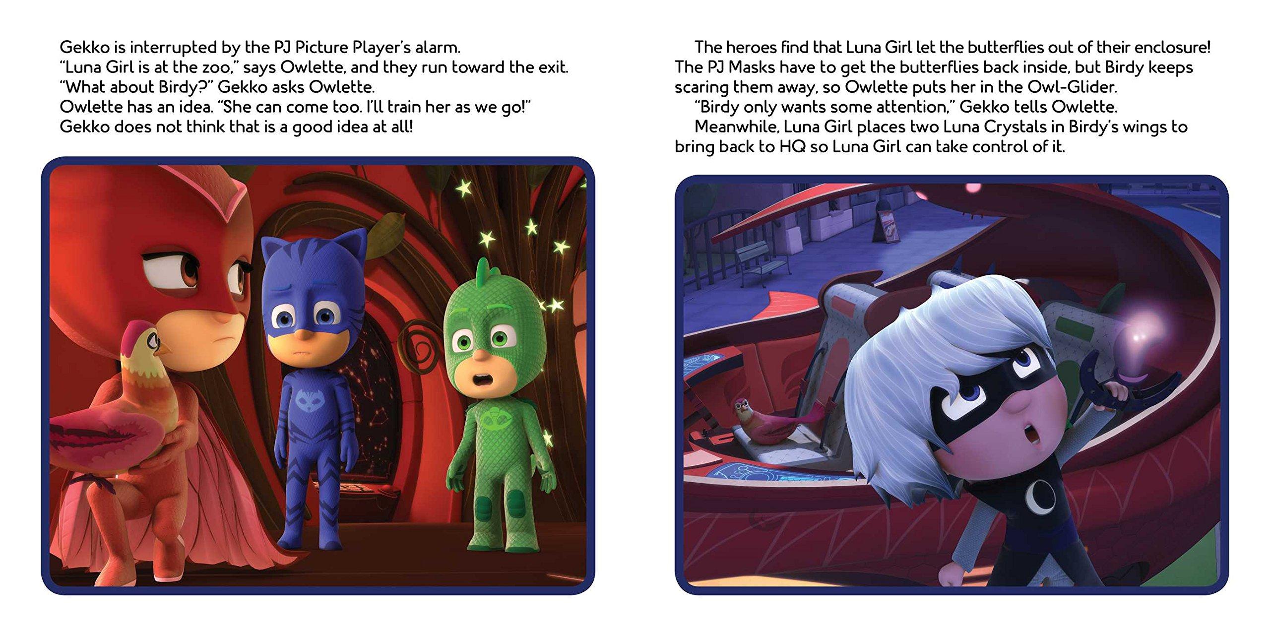 Owlette Gets a Pet (PJ Masks): Maggie Testa: 9781534410497: Amazon.com: Books