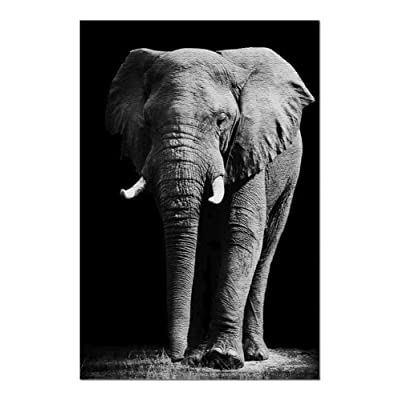 Huge African Elephant Portrait in Black & White 9018063 (Premium 1000 Piece Jigsaw Puzzle for Adults, 20x30, Made in USA!): Toys & Games