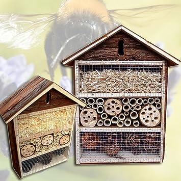 (049) XL para insectos Abejas Hotel Insectos Casa nistkasten Caja Nido: Amazon.es: Productos para mascotas