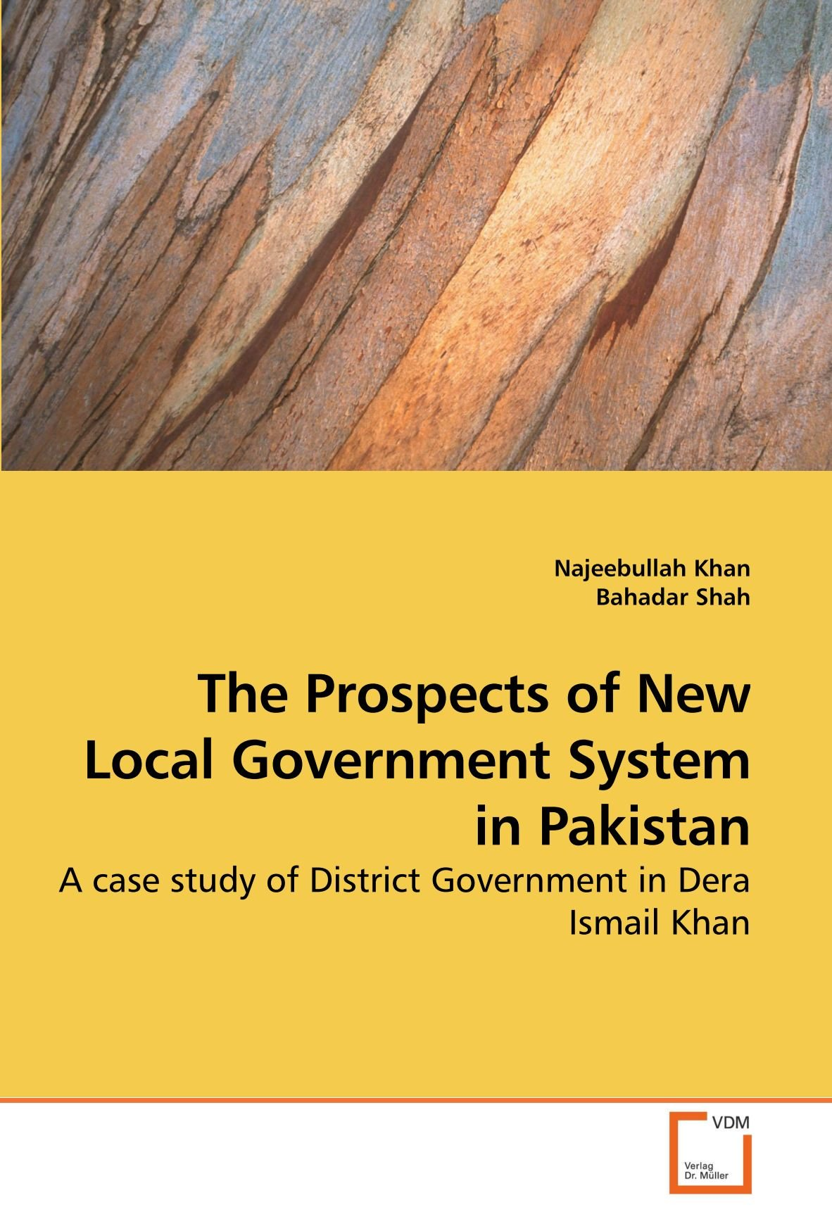 The Prospects of New Local Government System in Pakistan: A case study of District Government in Dera Ismail Khan PDF