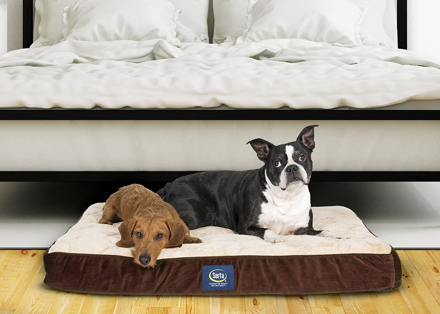 Dog beds that look like couches - Amazon Com Serta Orthopedic Quilted Pillowtop Dog Bed Large Brown Pet Supplies